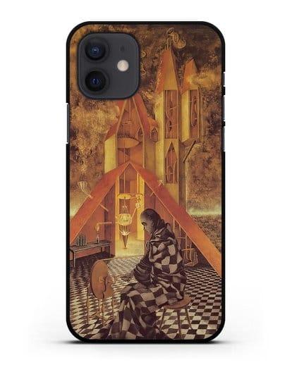 Чехол Алхимия или бесполезная наука (Варо Ремедиос) силикон черный для iPhone 12